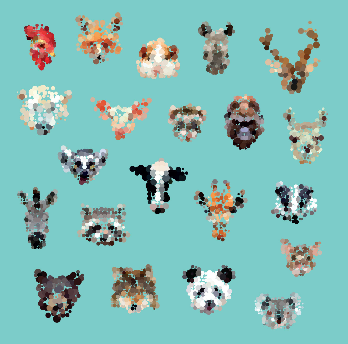 dotted animals faces